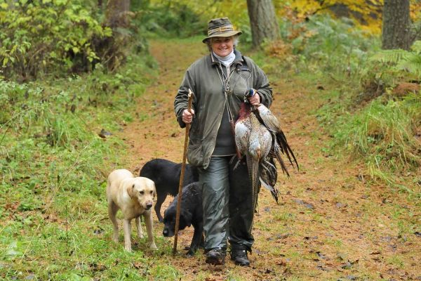 A photograph of a woman carrying pheasants accompanied by her black and golden labradors at Edradynate Shooting Holidays in Scotland - Edradynate Estate, Luxury Country House and Sporting Estate , Perthshire