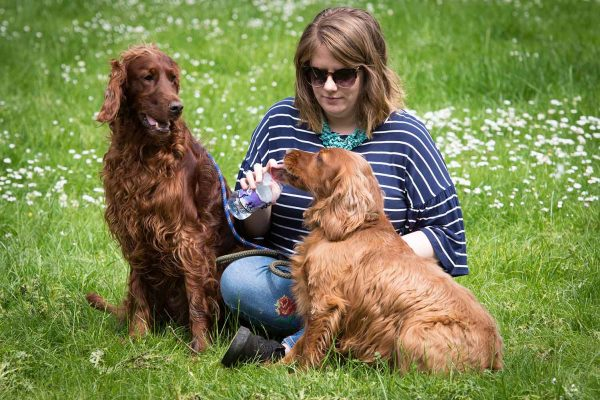 A colour image of a lady sat in grass giving her dog water at the Edradynate May 2017 clay pigeon shoot day - Edradynate Estate, Perthshire - Luxury Country House and Sporting Estate for Rent in Scotland