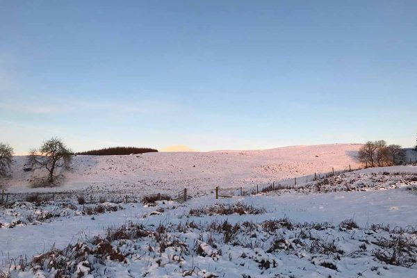 A colour image of Edradynate Estate in the snow displayed in the mind the hungry gap new article for supplementary feeding of game birds and wild birds